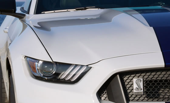 Importação independente Ford Mustang Shelby GT 350